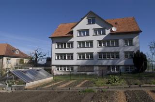 Wh brenden lutzenberg 1